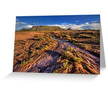 Summer Rains Greeting Card