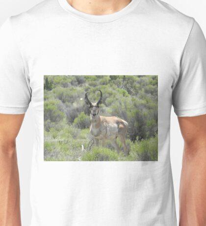 Arizona Pronghorn Unisex T-Shirt