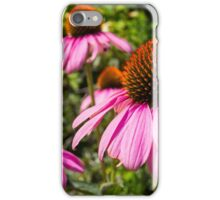Purple Coneflowers iPhone Case/Skin