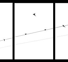 Birds on a Wire Triptych by BCallahan