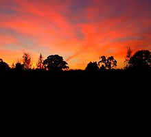 Beautiful Sunset by Charlotte Kelsey