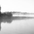 Early Morning Mist by Christopher Clark