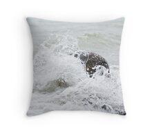 Shorelline - Presqui'le Provincial Park, Ontario Throw Pillow