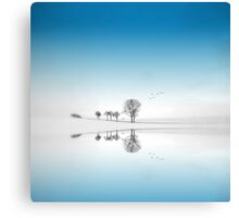Blue Season Canvas Print