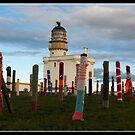Fraserburgh Lighthouse by Susan A Wilson
