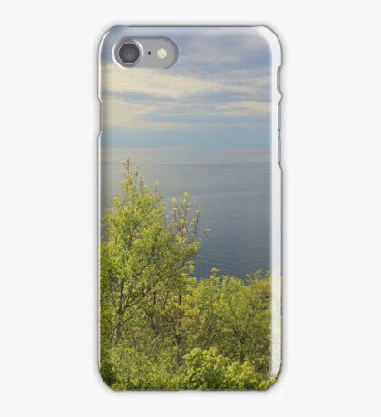 Silver Ocean iPhone Case/Skin