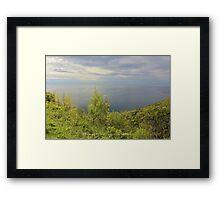 Silver Ocean Framed Print