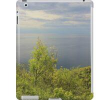 Silver Ocean iPad Case/Skin