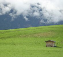 Alps, Clouds, & Barn - Austria by Gina Livingston