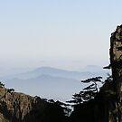 Yellow Mountains by alexisjmichel