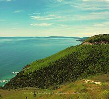 View From Smokey Mountain by Stephanie Rachel Seely