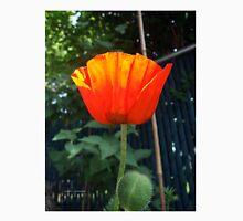 First Poppy of the Season in Mo's Garden Unisex T-Shirt
