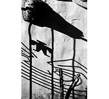 San Xavier Gate Shadow with Cactus BW Photographic Print