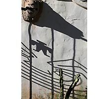 San Xavier Gate Shadow with Cactus Photographic Print