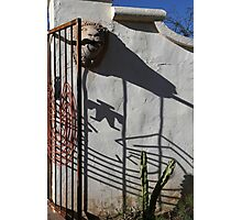 San Xavier Gate Shadow with Cactus 2 Photographic Print