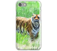 Bengal Tiger in Meadow iPhone Case/Skin