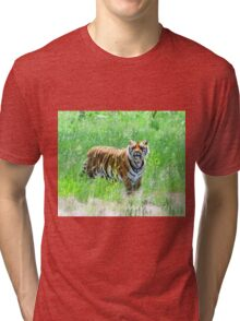 Bengal Tiger in Meadow Tri-blend T-Shirt