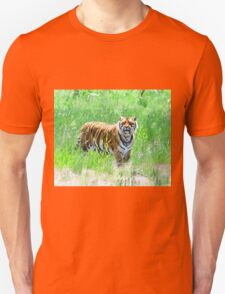 Bengal Tiger in Meadow Unisex T-Shirt