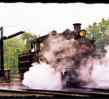Locomotive & Steam Jenny  by ginawaltersdorf