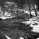 Winter Stream by Casey Voss