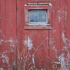 red window by frogwithwings