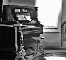 Old Organ by trueblvr