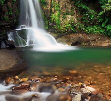 Waiau falls by Paul Mercer