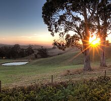 Gippsland Sunrise • Gippsland • Victoria by William Bullimore