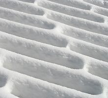 Snow on the Deck by Don Brogan