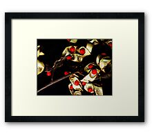 Red Seeds and Seed Pod on Black Framed Print