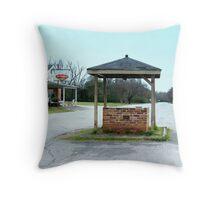 Community Well  Throw Pillow