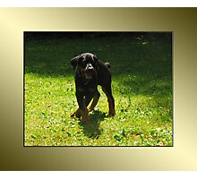 Here I come! Photographic Print
