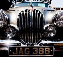 Jag 388 by David Petranker