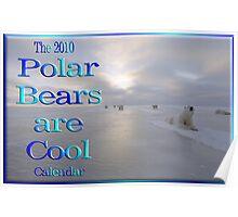 2010 Polar Bear Calendar Cover Poster