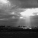 rays of light  by pdsfotoart