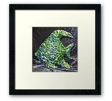 Green Fish, Blue Fish Framed Print