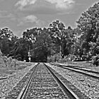 Tracks by Turtle6