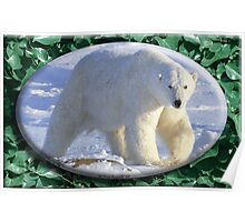 July Polar Bear Poster