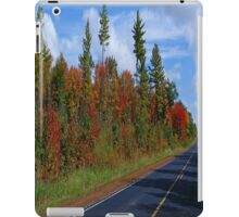 Beautiful World iPad Case/Skin