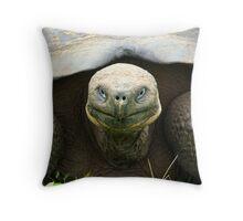 Big Guy (Galapagos Islands) Throw Pillow