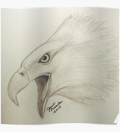 Bald Eagle Sketch Poster