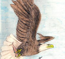 Bald Eagle in Flight by janetmarston