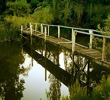 Old boardwalk, Daylesford by Roz McQuillan