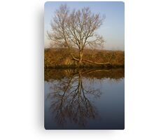 Tree-Flection Canvas Print