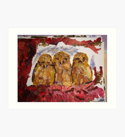Owlets thinking not yet spotted Art Print