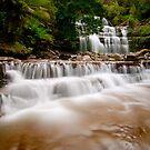 Liffey Falls, Tasmania by NickMonk