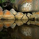 Tidal River Rocks by Mark Higgins