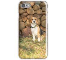 Roxie.... Beautiful Beagle.... iPhone Case/Skin
