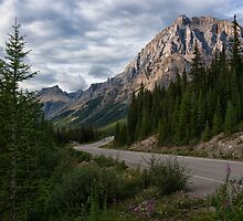Icefields Parkway in Bloom by Kristin Repsher