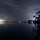 Light of Night by Michael  Bermingham